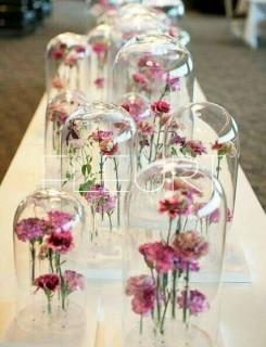 Közepes üvegbúra dekoráció