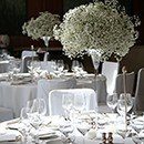 Tall vases and chalices rental