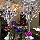 Venue decoration rental